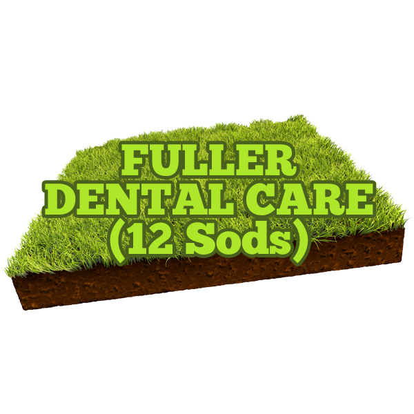 Fuller Dental Care