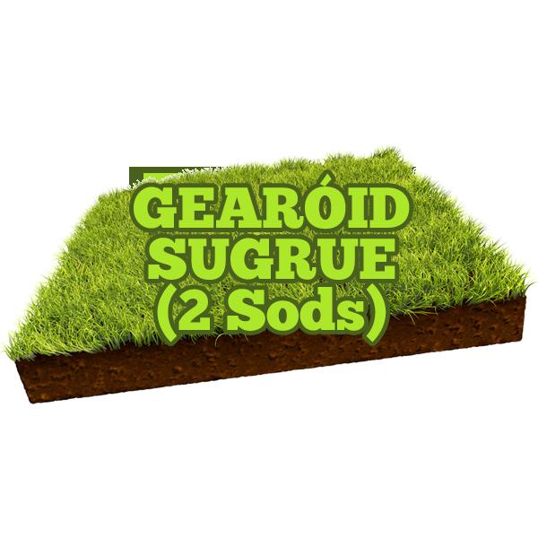 Gearóid Sugrue