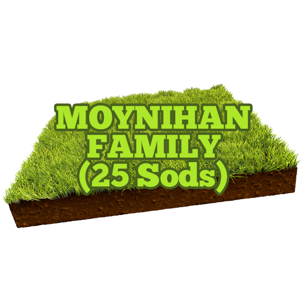 Moynihan Family
