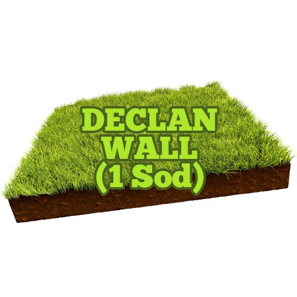 Declan Wall