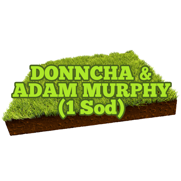 Donncha & Adam Murphy