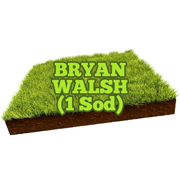 Bryan Walsh