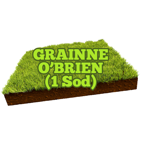 Grainne O'Brien