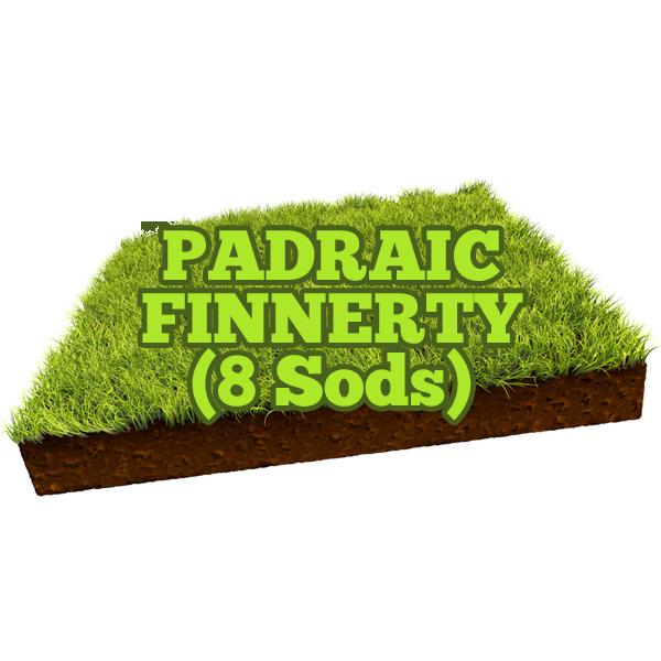 Padraic Finnerty