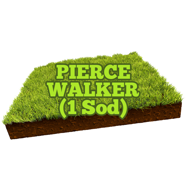 Pierce Walker