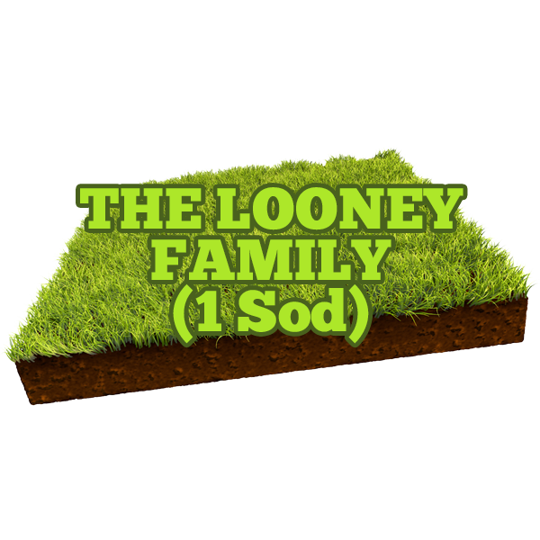 The Looney Family