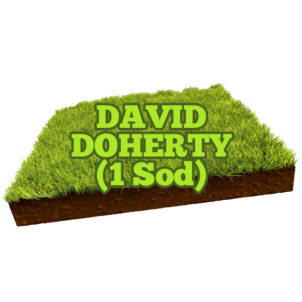 David Doherty