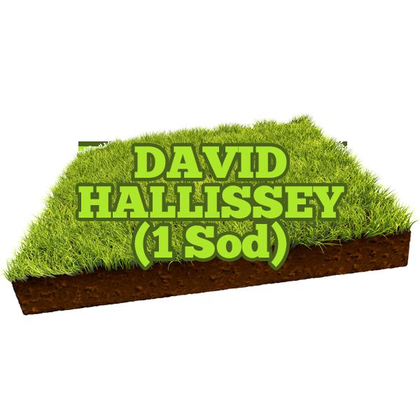 David Hallissey