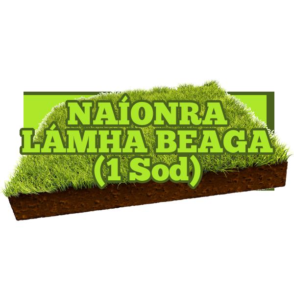Naíonra Lámha Beaga