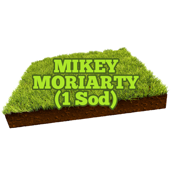 Mikey Moriarty