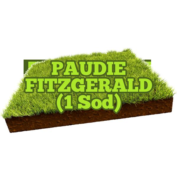 Paudie Fitzgerald