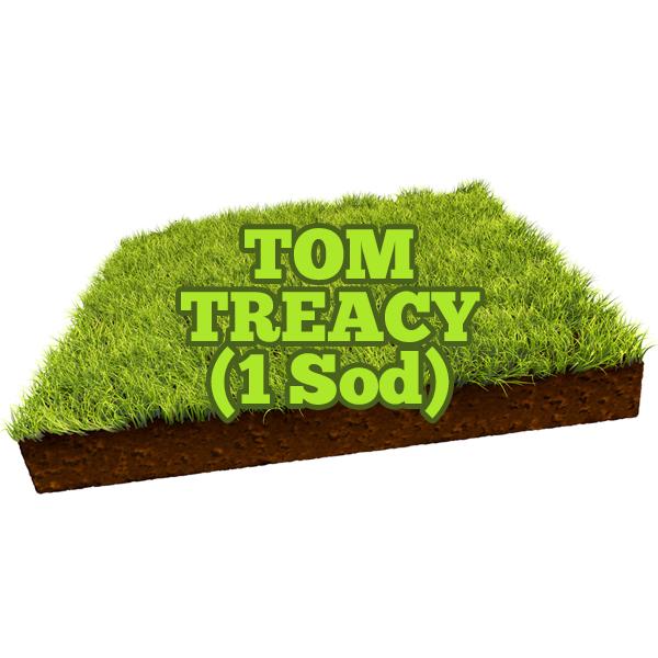 Tom Treacy