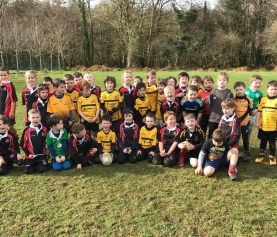Killarney RFC Minis welcome Tralee and Abbeyfeale kids