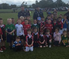 Killarney RFC News: Aug 31, 2015