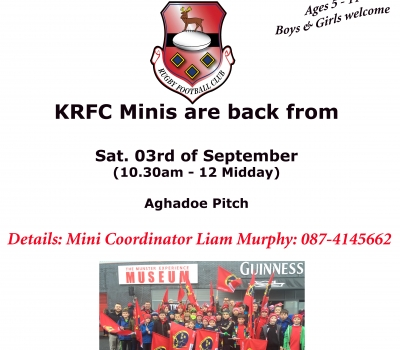 Minis and Youths returning to Training